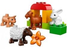 Животные на ферме - 10522