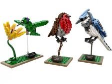 Птицы - 21301