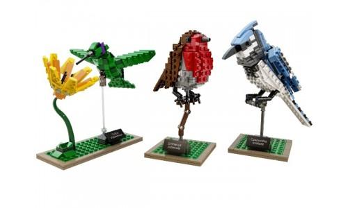 Птицы 21301 LEGO Ideas (CUUSOO)