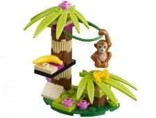 Банановое дерево орангутана - 41045