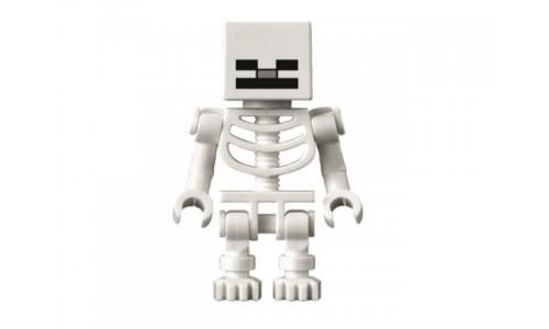 Skeleton with Cube Skull min011